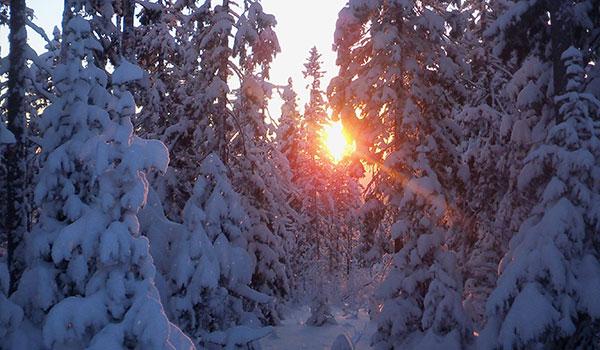МЧС Пермского края предупреждает обаномальных холодах