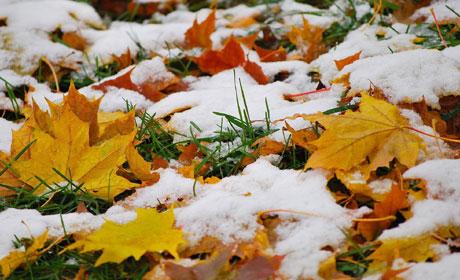 Ввыходные вПерми предполагается мокрый снег иморось