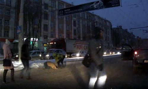 ВПерми неадекватный шофёр избил пешехода