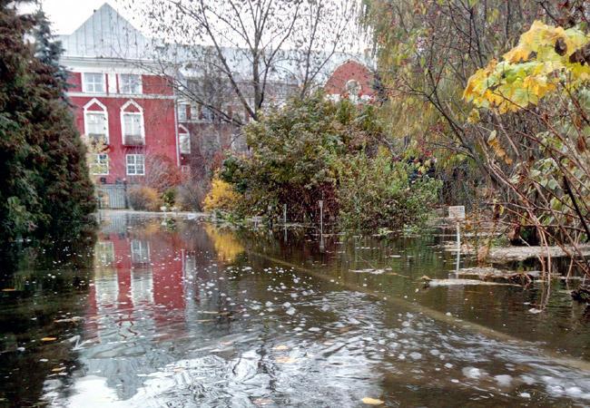 Ремонт водовода натерритории Ботанического сада продолжается