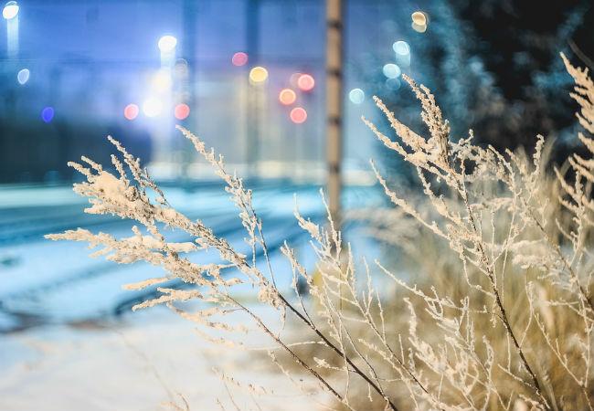 После недолгого потепления в Пермь вернутся морозы